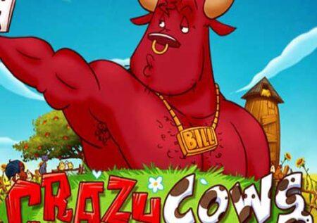 Crazy Cows Online Gratis
