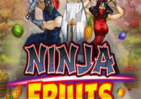 Ninja Fruits Online Gratis