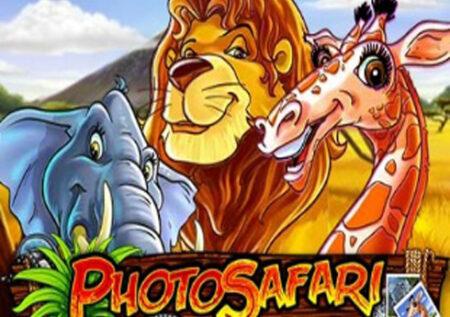 Photo Safari Online Gratis