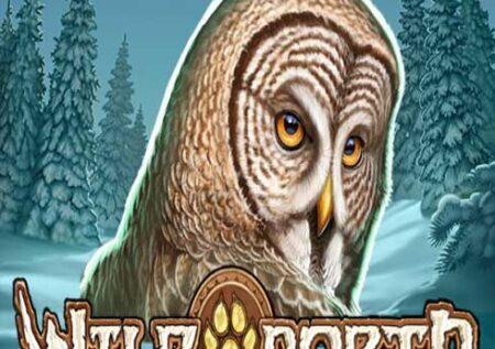 Wild North Online Gratis