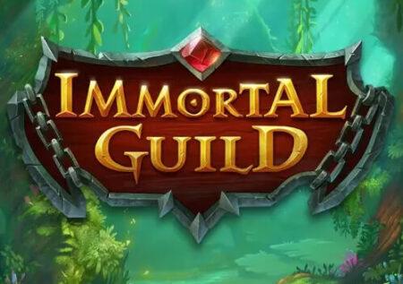 Immortal Guild Online Gratis